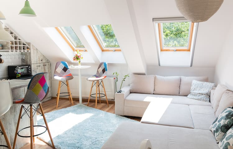 Cozy flat in the heart of the city