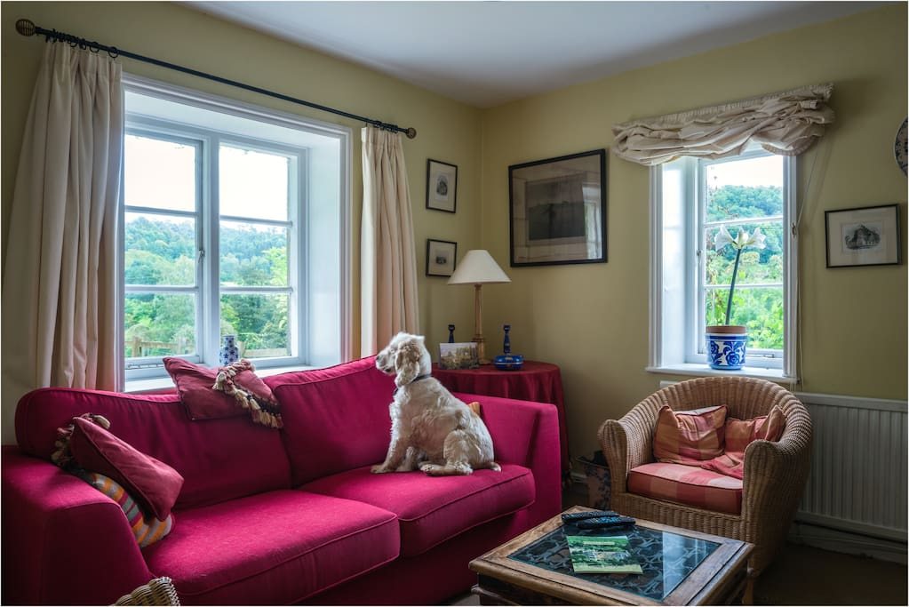 Marlings End is dog friendly!