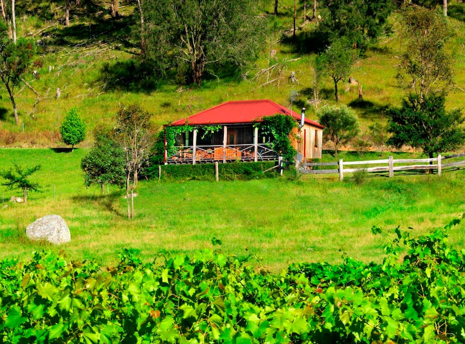 The cottage is set up on the hillside, overlooking our vineyards and the valley below - the views are beautiful!