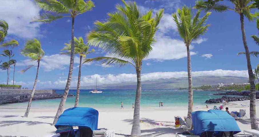 Mauna Lani Resort- 15 Mins walk to Beach! Luxury!