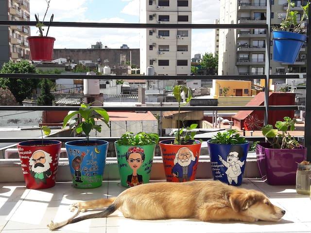 [EN] The apartment has a balcony with pots, through which a lot of light enters and you can sunbathe.  [ES] El departamento tiene un balcón con macetas, por el que entra mucha luz y se puede tomar sol.
