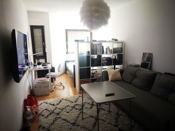Wunderschöne Wohnung in Mannheim