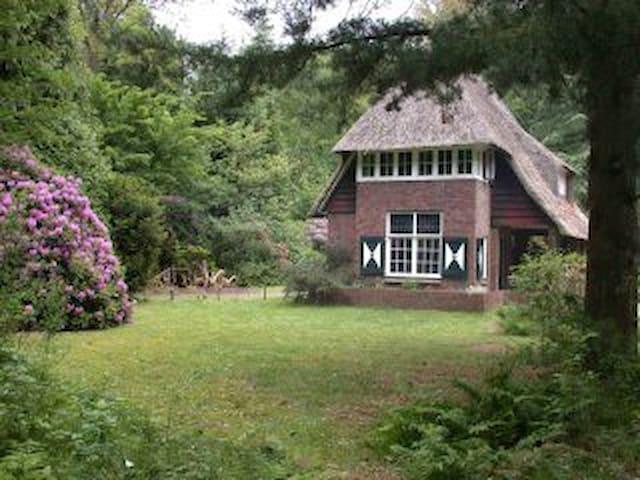Jaren '30 huis in een bos - Tynaarlo