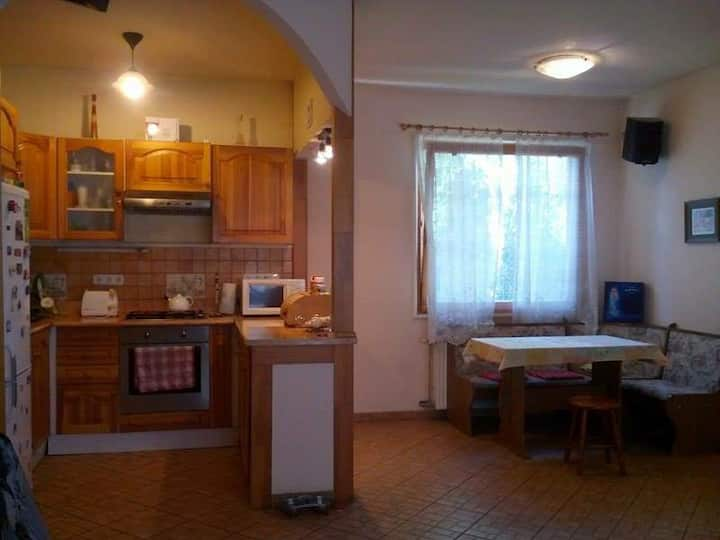 Room for rent near Budapest