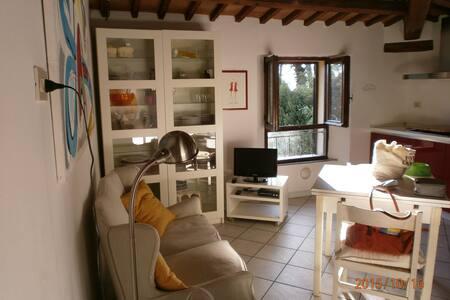 Apartment in Massa Marittima - Massa Marittima - Huoneisto