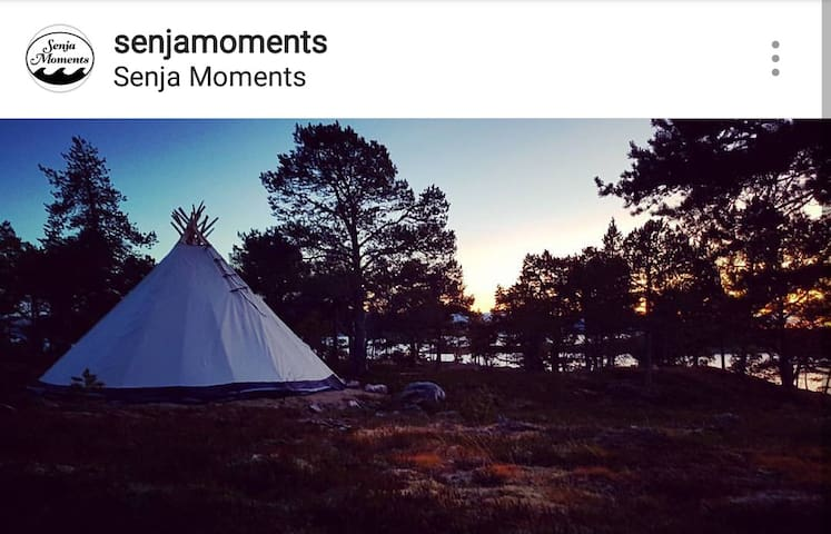 Senja Moments Lavvo/Tipi