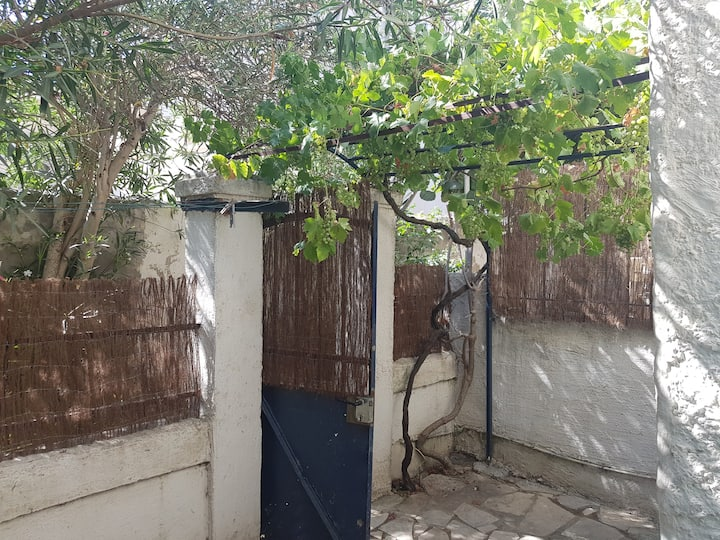 coquet petit studio terrasse intra muros