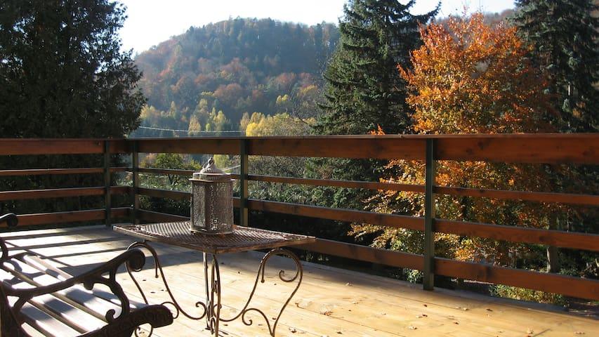 Maison de vacances **** en Alsace - Dambach / Wineckerthal