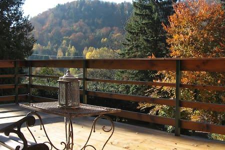 Maison de vacances **** en Alsace - Dambach / Wineckerthal - Huis