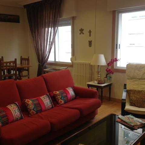 PISO CENTRICO AMPLIO Y ACOGEDOR - Pontevedra - Wohnung