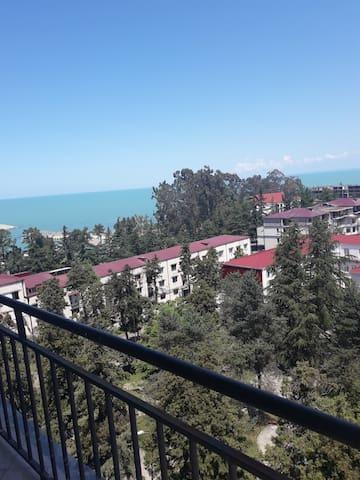 Апартаменты с видом на море и хорошей экологией
