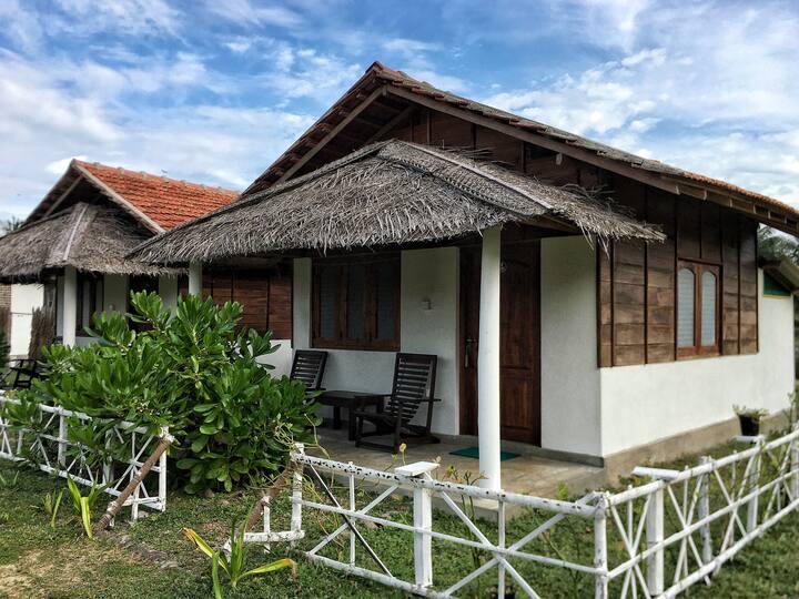 Ceylon Kite Ranch 6