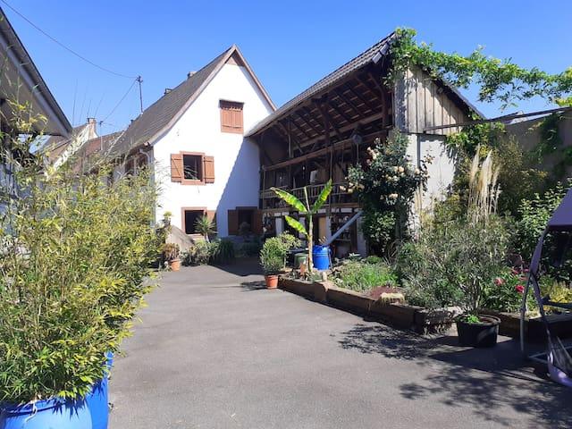 Chambre MAMIE ET PAPI - Ferme proche Strasbourg