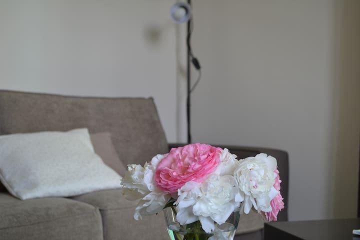 Appartement lumineux au cœur de la Provence - Noves - Leilighet