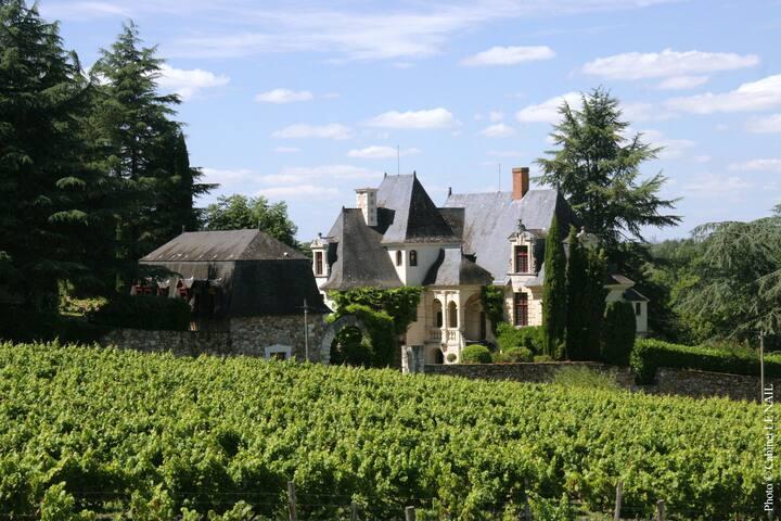 'Les Coteaux', Manoir de la Groye, Loire Valley