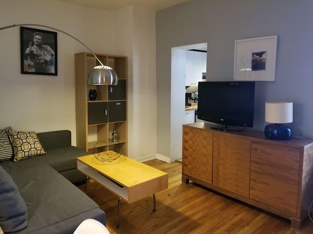 Magnifique logement au coeur de Montréal