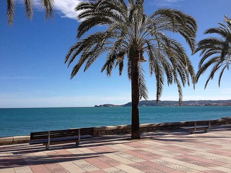 Boulevard in the port of Javea