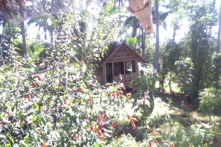 Tres Maria's Mountain Cottages!