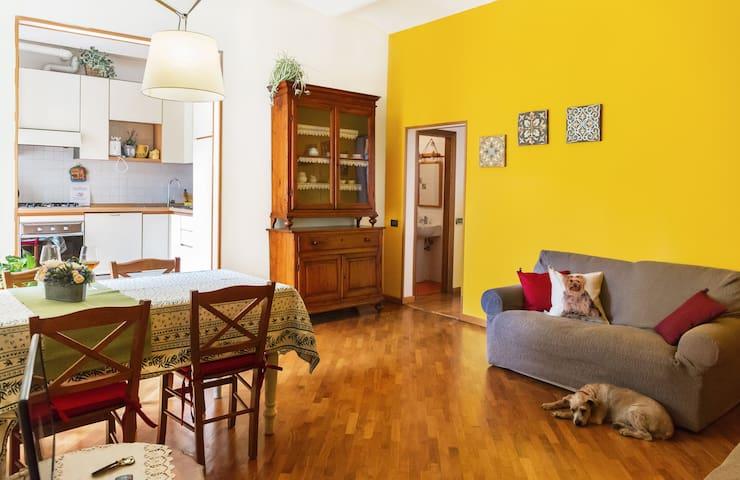 Airbnb Piazza Massimo D Azeglio Vacation Rentals