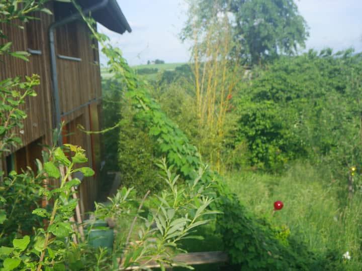 Atelier in Feldrandlage