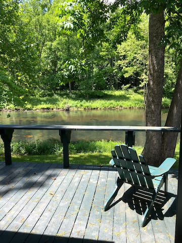River Front Cottage - Right on the Jackson! - Hot Springs - Hus