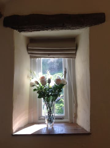Bedroom window.