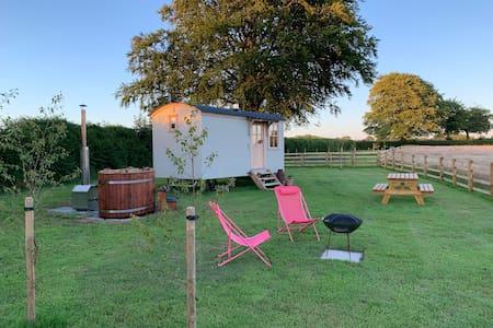 Secluded Stargazing Romantic Shepherds hut&hot tub