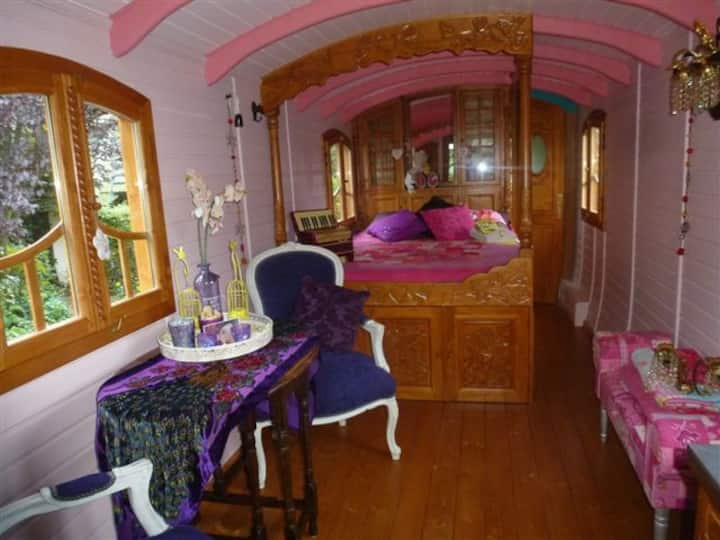 Mystic farm Gipsywagon & Welness:Schooteindhoeve