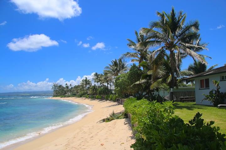 Coconut Cabana Beach front home Waialua 30 nts