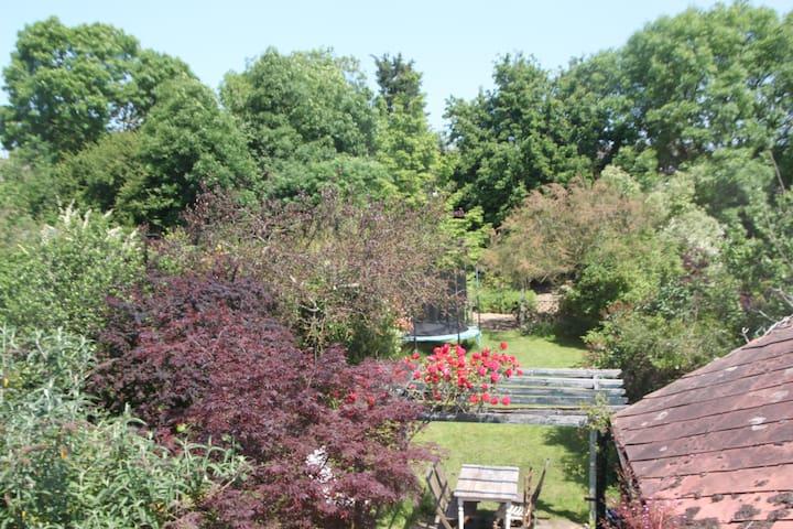 Huge garden in London - family home