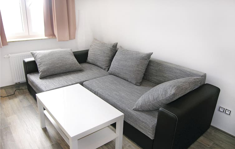 Holiday apartment with 1 bedroom on 41 m² in Abertamy