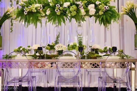 Large domaine for yours weddings venues & parties - Mas-Saintes-Puelles