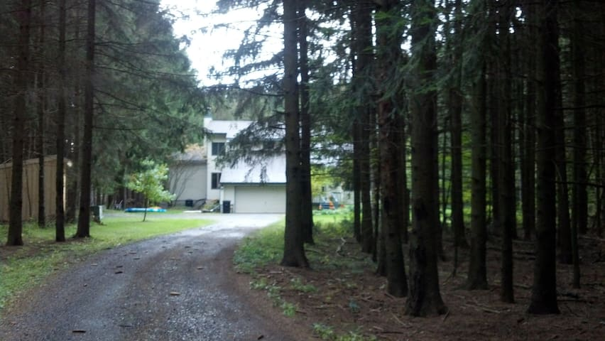 Spruce Haven Bed and Breakfast