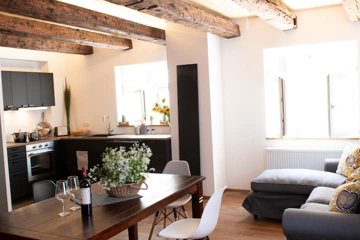 Großes 4 1/2 Zi.- Apartment mitten in der Altstadt