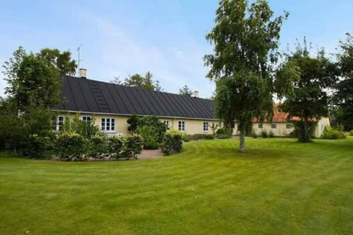Great for private holiday - Bindslev - Casa