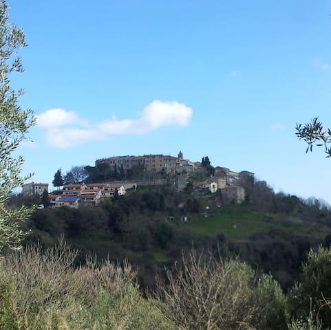 "La ""Mucca"" Toscana al Podere Agrituristico Regina - Montorsaio"