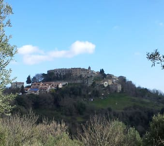"La ""Mucca"" Toscana al Podere Agrituristico Regina - Montorsaio - B&B"