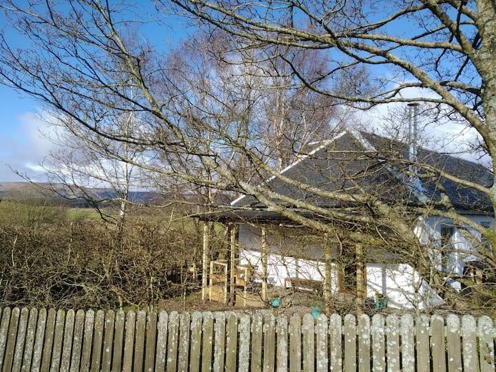 Swallow's Nest. A Loch Lomond Hideaway