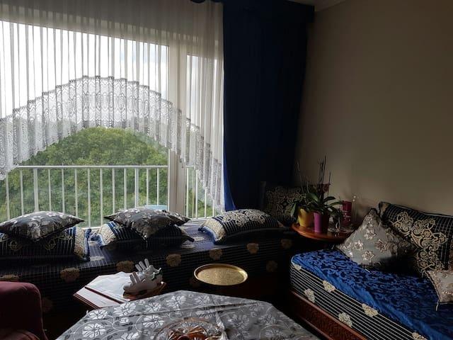 Jolie appartement situé à Bruxelles - Evere - Apartment