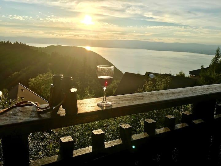Chalet in Thollon,with Panoramic Views Lake Geneva