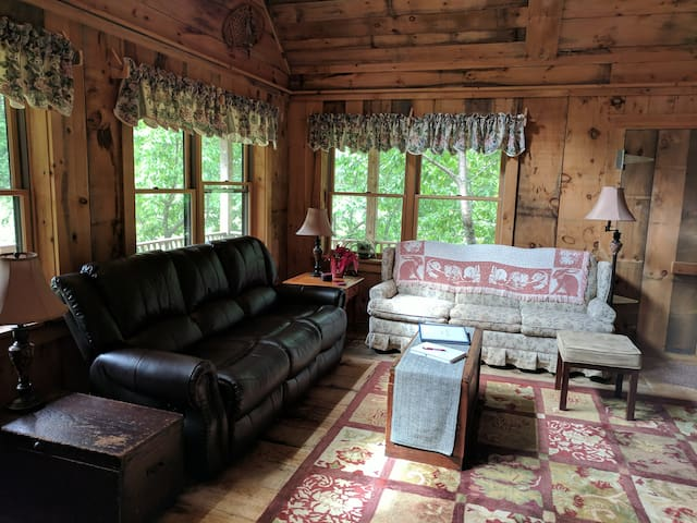 Living Room West toward Pull-Out
