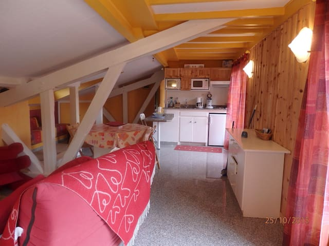 chalet le jamberoute - Arvieux - Wohnung