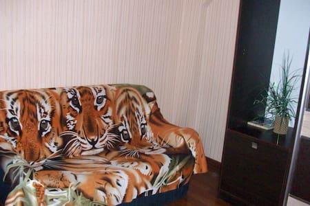 Отличная 1комнатная квартира стандарт-класса - Arkhangelsk