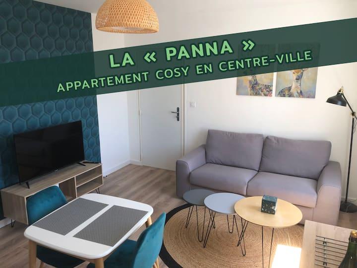 Appartement cosy situé en centre-ville (Panna)