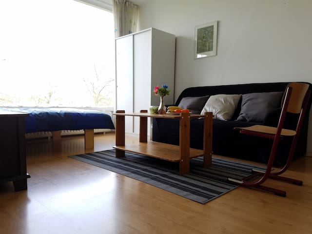 Spacious room in Utrecht