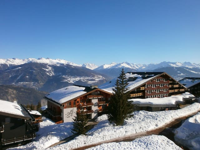 Apartment in Swiss Alps with views, skiing & sun - Anzere - Daire