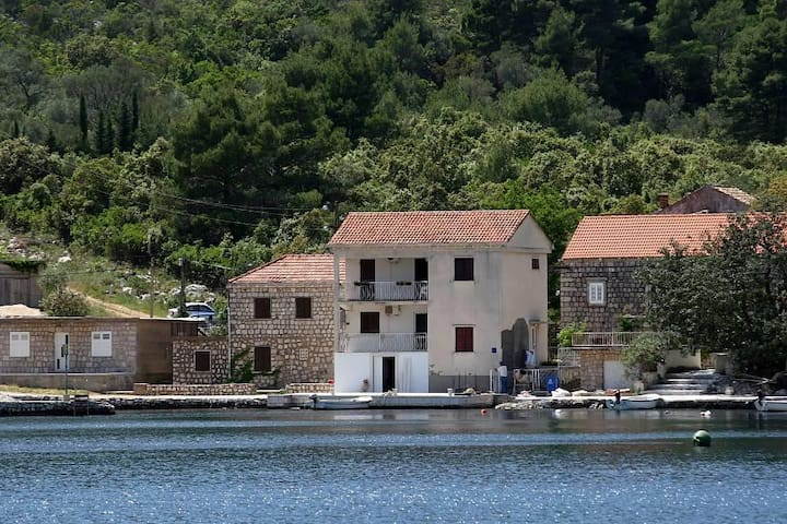 One bedroom apartment near beach Okuklje, Mljet (A-4933-a) - Okuklje - อพาร์ทเมนท์