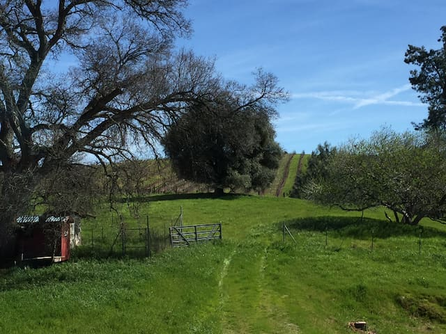 NEW LISTING: Heart of Wine Country - Plymouth - Huis