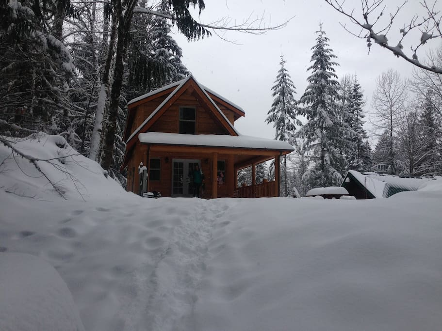 The Cabin in the Snow