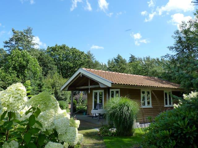 Romantisch huisje Klein Eden, Privé Wellness optie - Olterterp - Bungalow